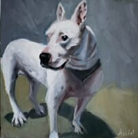 Pit bull - oil by Lisa Acciai