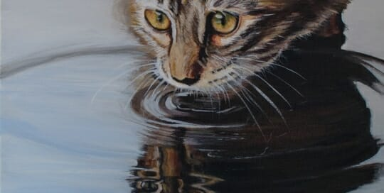 LAc Studio - Original Painting of reflecting cat by Lisa Acciai