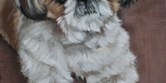 Sophie painting by Lisa Acciai of LAc Studio