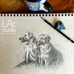 retreiver-dogs-sketch-Lisa-Acciai-LAcStudio