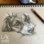 whiskey-sketch-Lisa-Acciai-LAcStudio