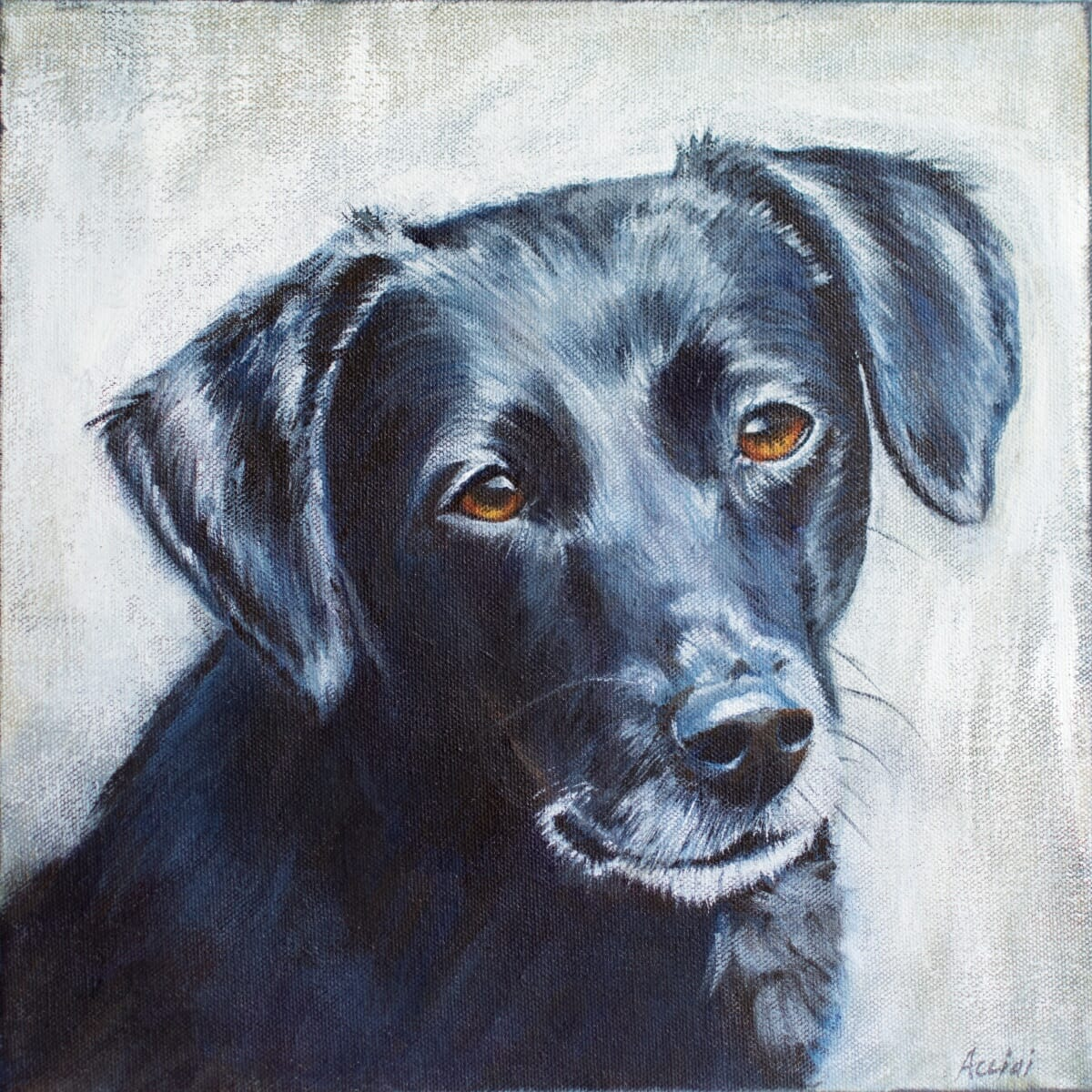 Labrador by Lisa Acciai of LacStudio