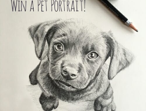 Pet Portrait Giveaway Winner!