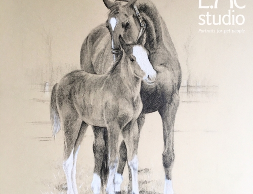 Mare and Foal Drawing: A Birthday Surprise