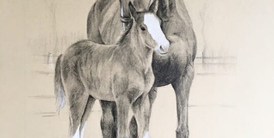 Patina and foal - by Lisa Acciai