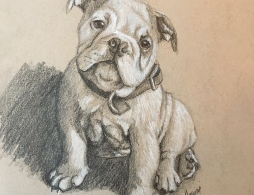 Pups, Profiles, and Slickers: September Sketches