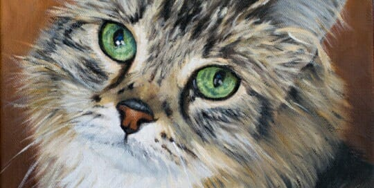 Mojo - oil painting Lisa Acciai