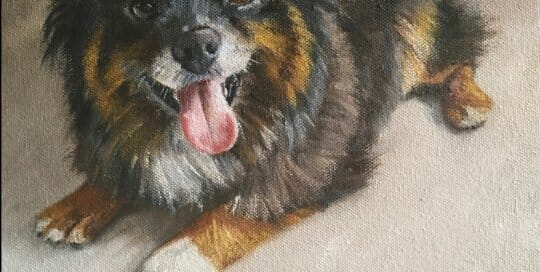 Hank oil painting by Lisa Acciai - LAcStudio