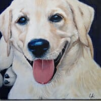 "LAc Studio - Pet Portrait Painting of ""Happy Lab"" by Lisa Acciai"
