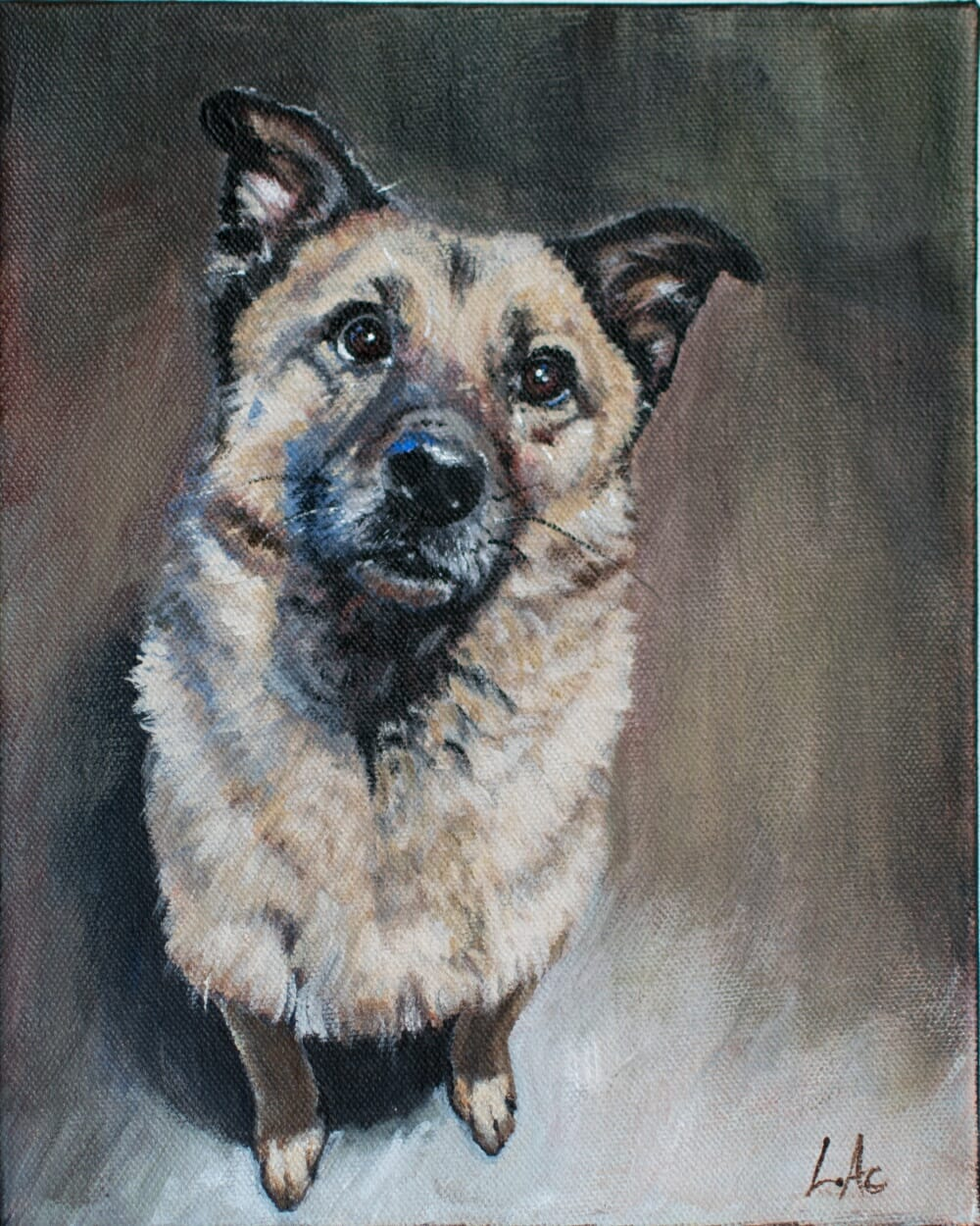 LAc Studio - Pet Portrait Painting of Amstel by Lisa Acciai