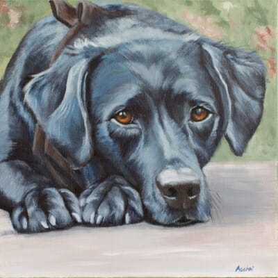 Lucy - painting by Lisa Acciai