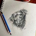 Cute dog sketch by Lisa Acciai