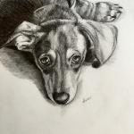Gabbie sketch by Lisa Acciai