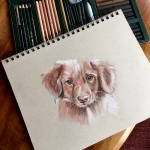 cute-dog-sketch-Lisa-Acciai-LAcStudio