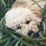Ellie - oil painting by Lisa Acciai