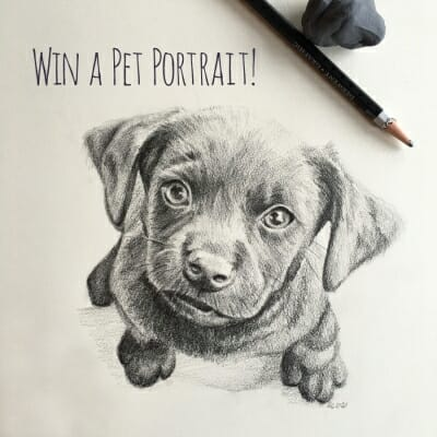 Pet Portrait Giveaway Winner