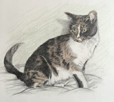 Patches-portrait-by-lisa-acciai
