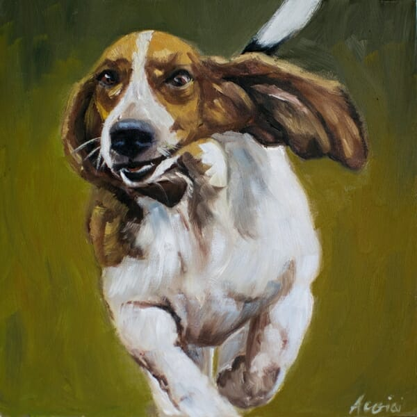 """Free at Last"" basset-hound-lisa-acciai"