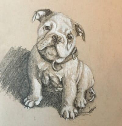puppy-sketch by Lisa-Acciai