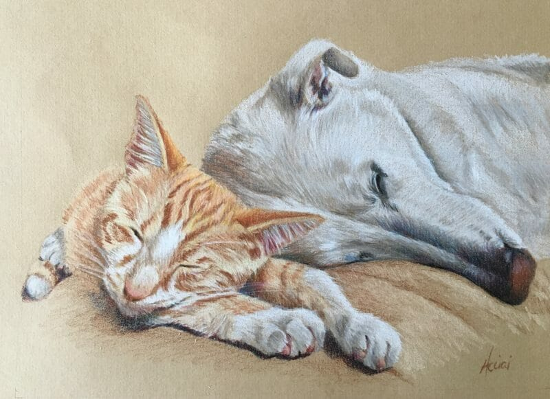 Steve and Jake - colored pencil portrait by Lisa Acciai