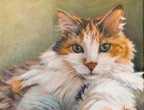 Ella Fitzgerald the cat