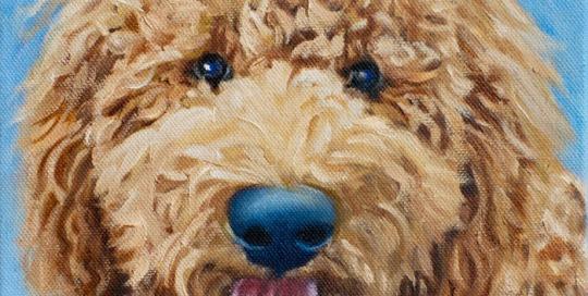 Ellie-oil painting by- Lisa Acciai