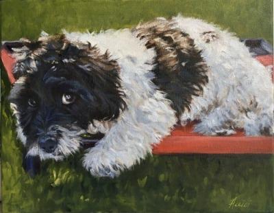 Buck original oil painting by Lisa Acciai