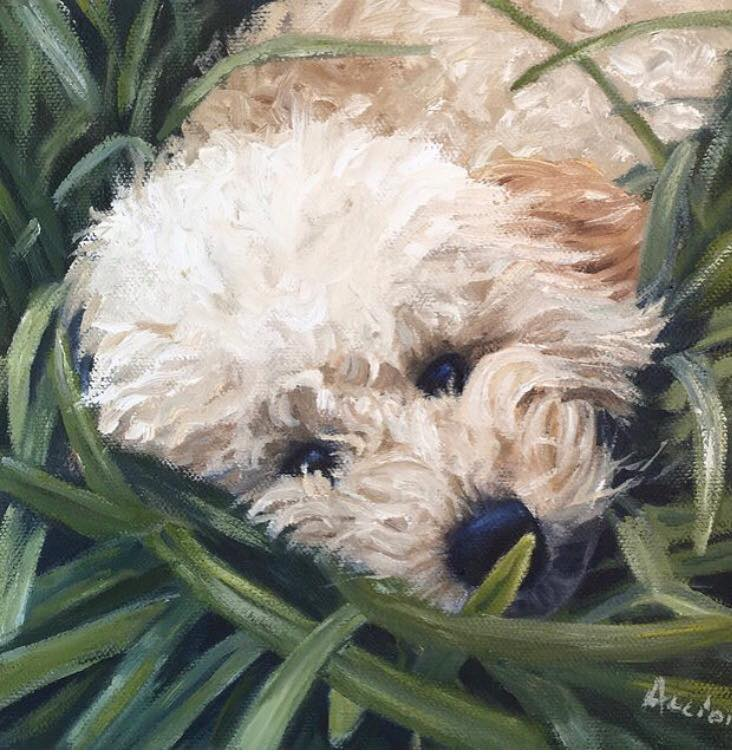 Ellie - 8x8 oil by Lisa Acciai
