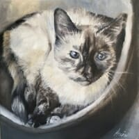 Velvet-oil-Lisa-Acciai