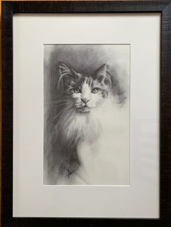 Cat study framed-Lisa Acciai