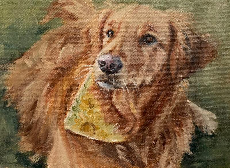 Maddie-Golden Retriever-oil painting-Lisa-Acciai