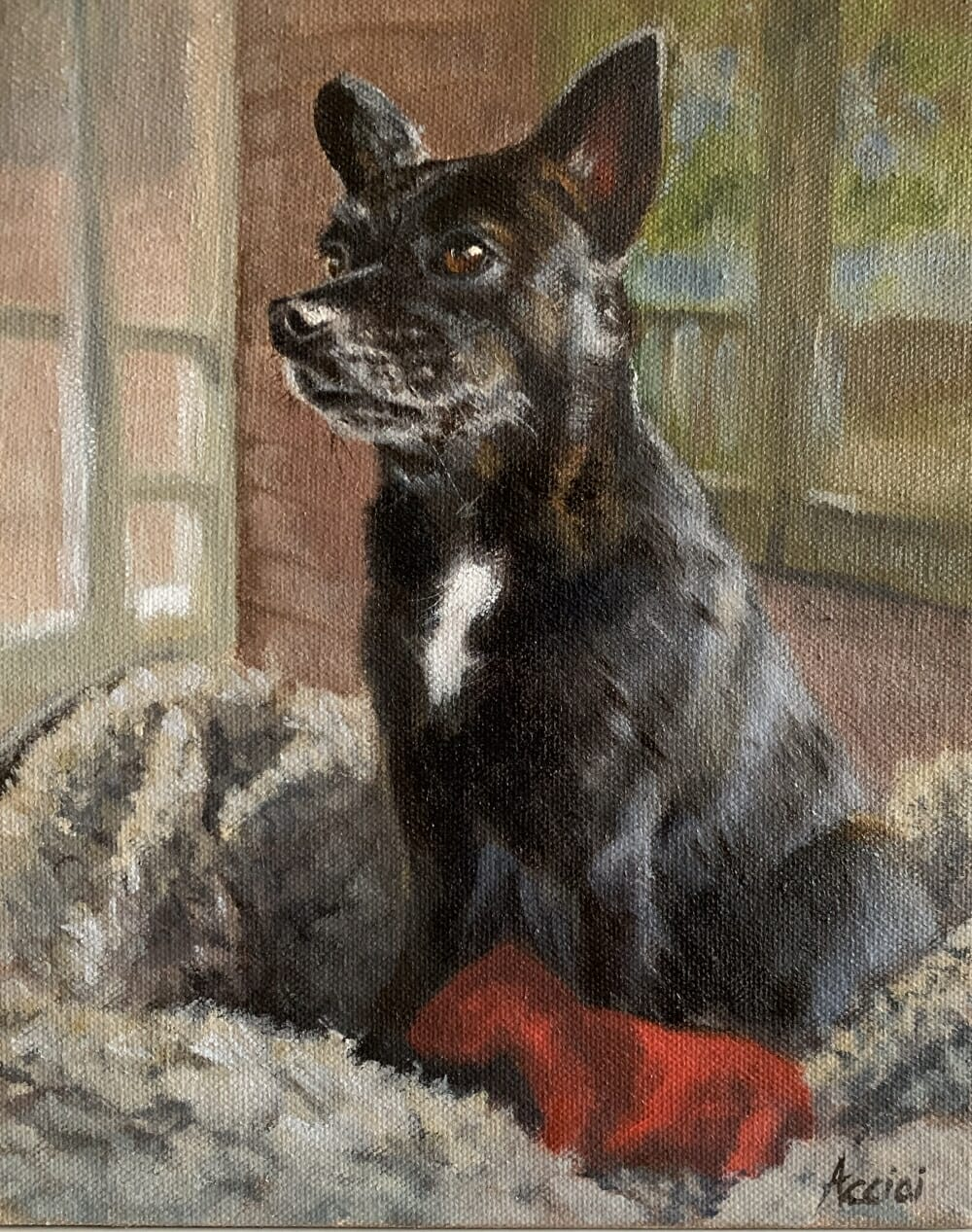 Trixie Chihualua -oil painting-Lisa Acciai