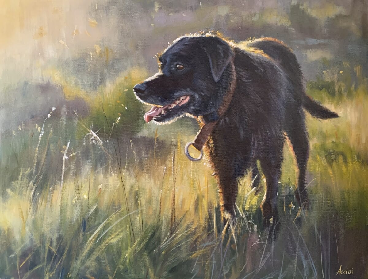 black lab morning glow-oil-Lisa-Acciai
