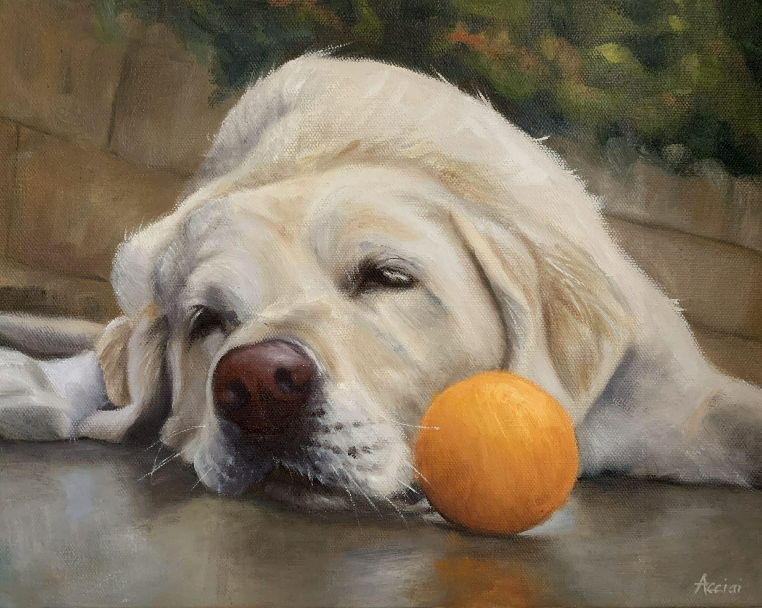 White lab -oil painting Lisa Acciai