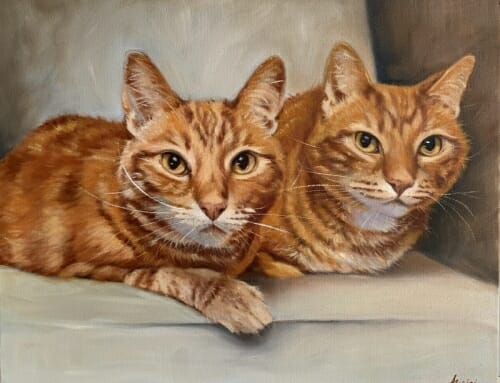 Bruce and Clarence – Ginger Tabby Cats