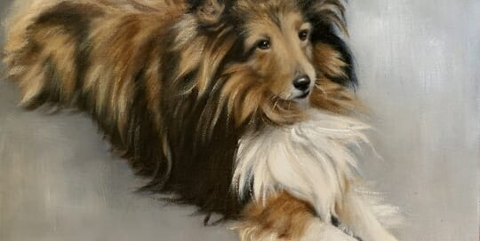 Duke-oil-Lisa Acciai