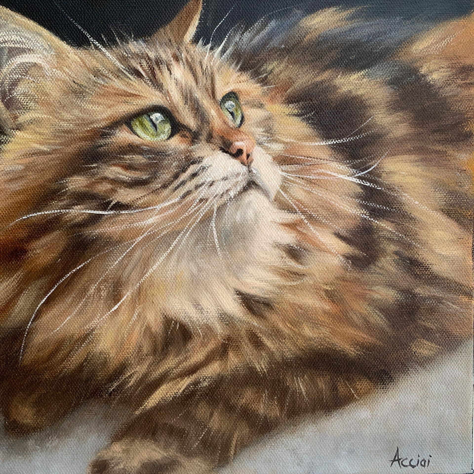 Pia - Siberian Forest Cat oil painting by Lisa Acciai