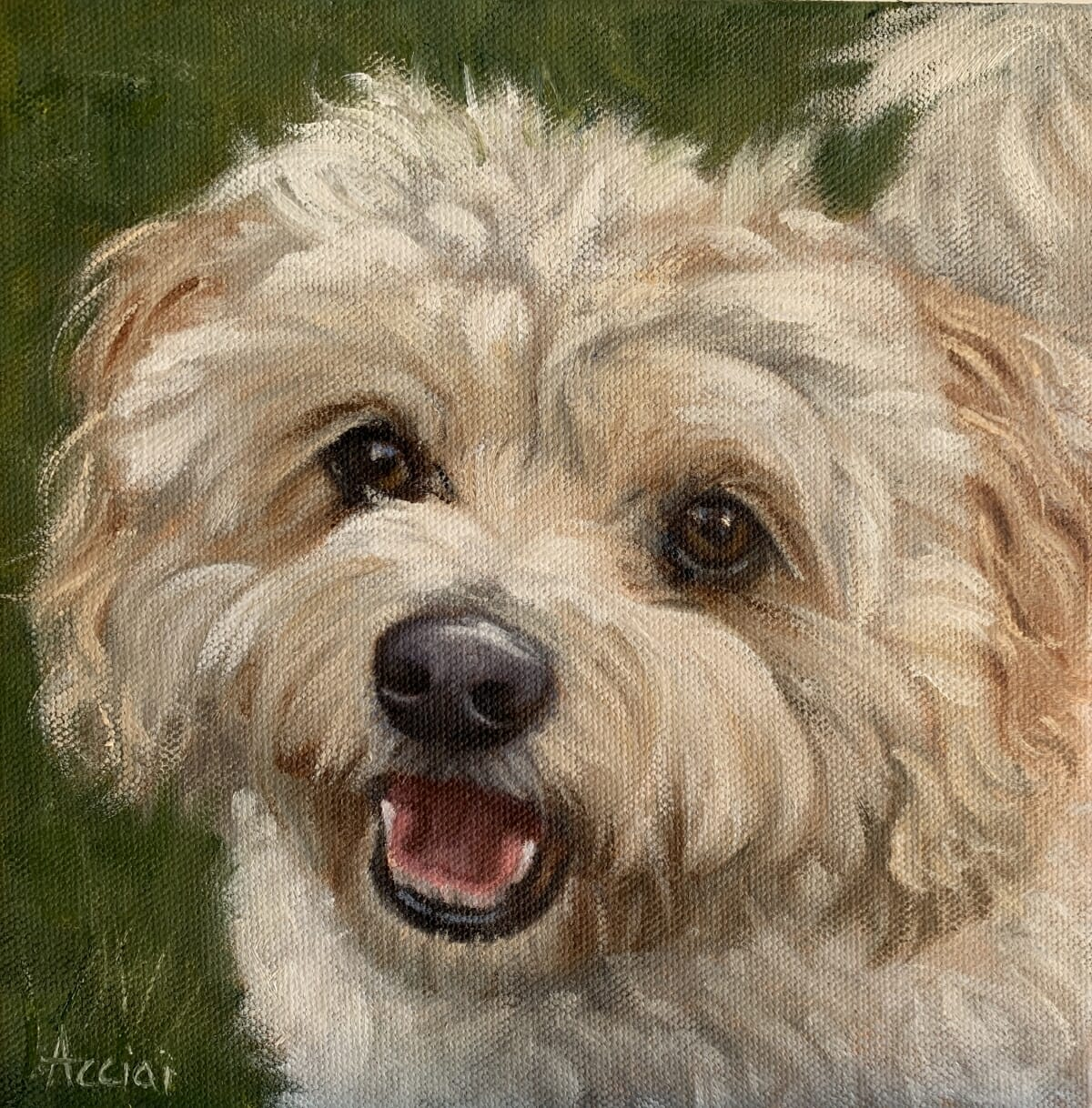 Tibby-oil-Acciai-8x8