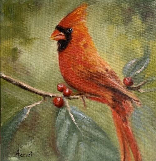 Male Cardinal - oil Acciai