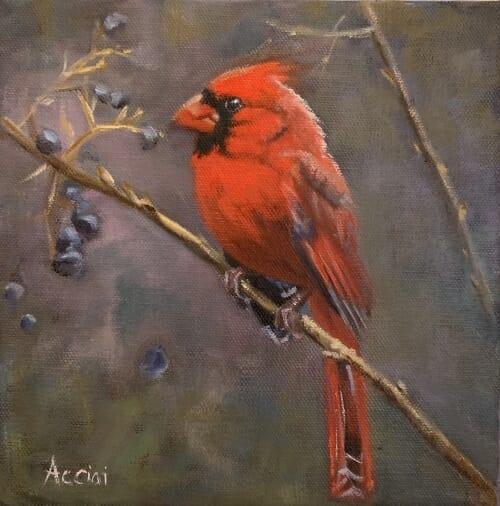 Evening Cardinal - oil - Acciai
