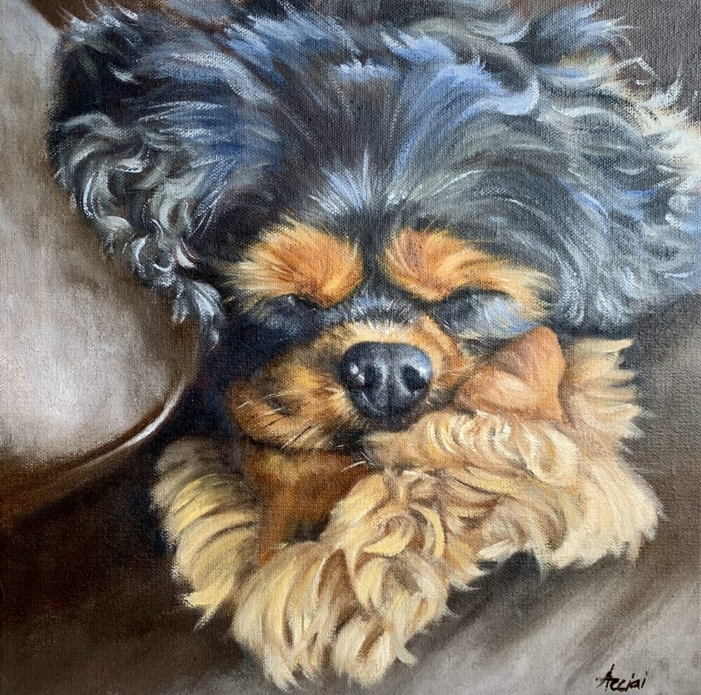 Riley-oil-Acciai