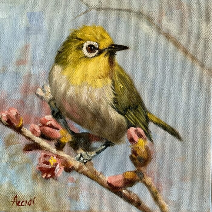 Yellow bird - oil Acciai