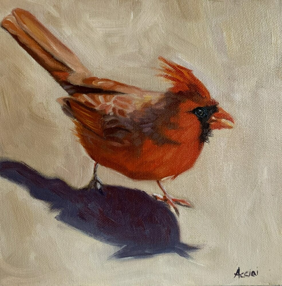 Cardinals shadow Oil 8x8 Acciai
