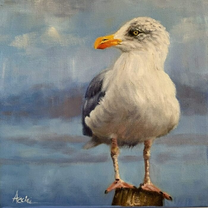 Seagul oil 8x8 Acciai