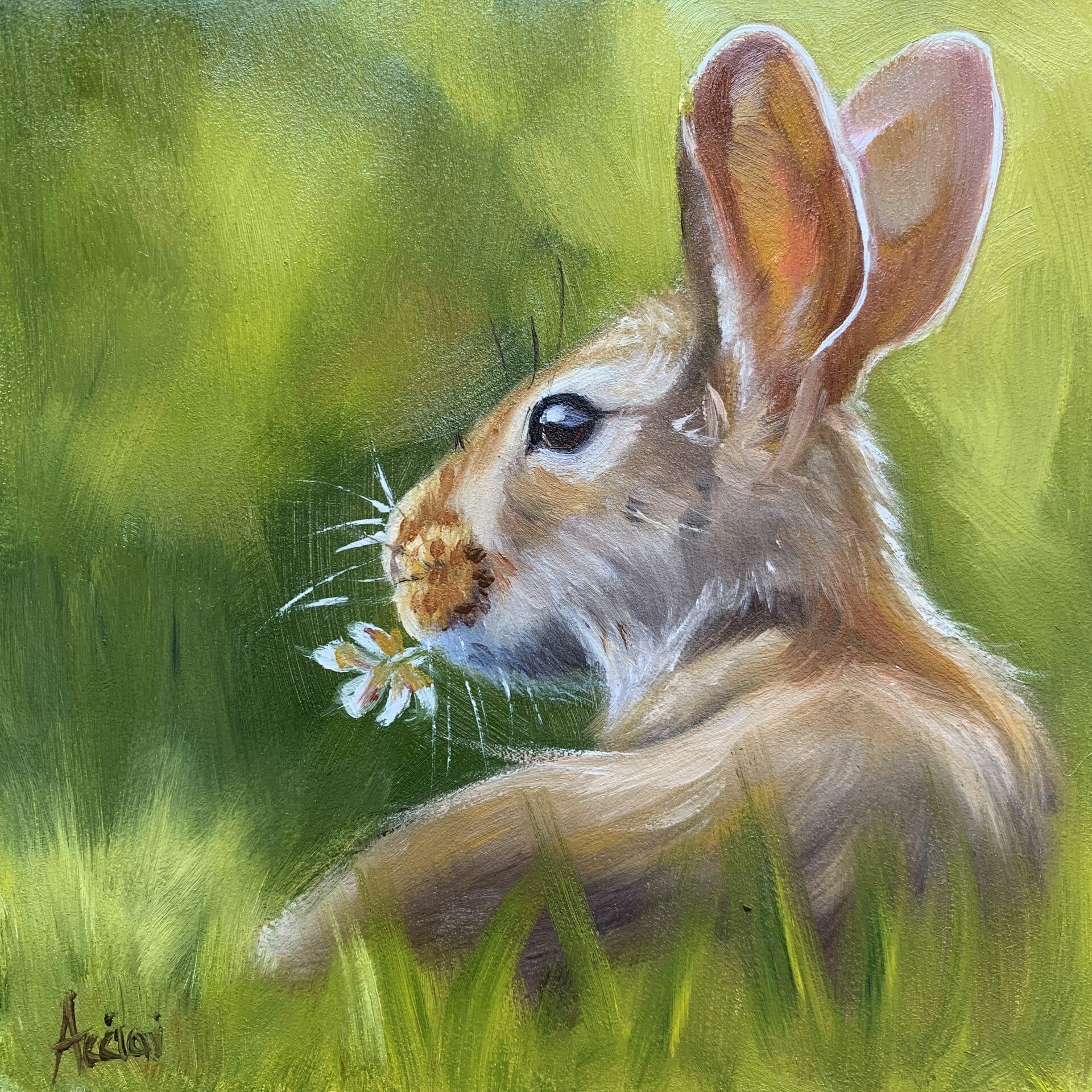 Spring bunny-oil-6x6-LAcciai