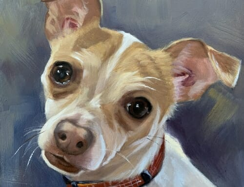 Noelle – Chihuahua Mix