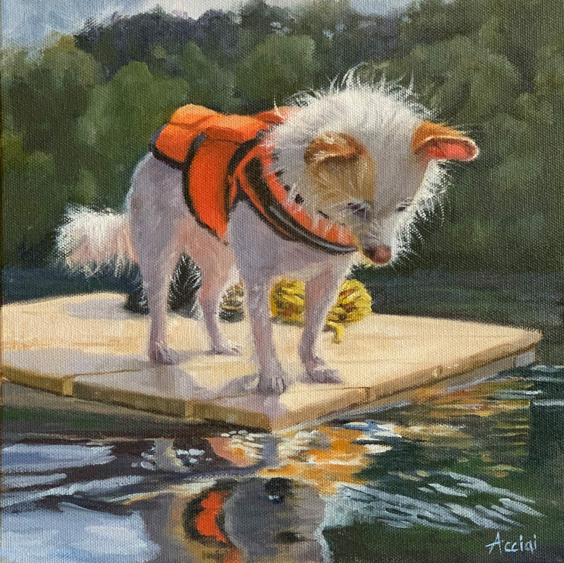 Ziggy, Terrier mix, oil painting by Lisa Acciai