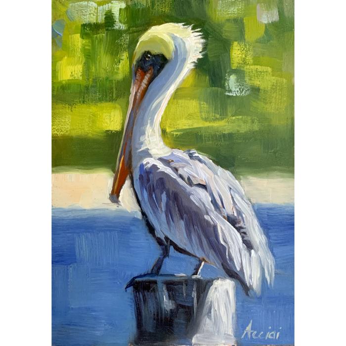 PelicanStudy-oil-5x7-LAcciai-web